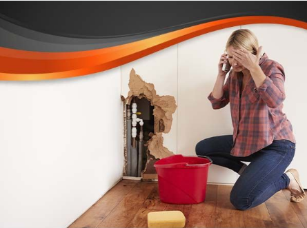 Photo of a frustrated woman on the phone experiencing water damage