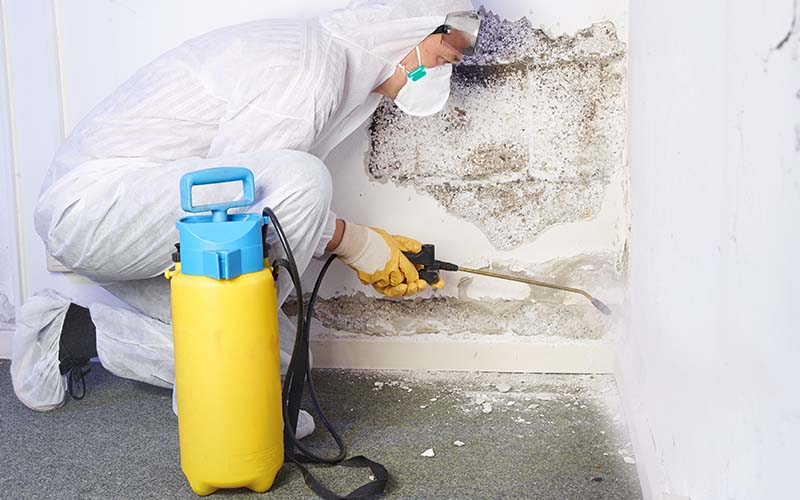 Image of a man removing mold.
