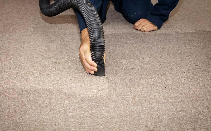 Image of staff drying carpet