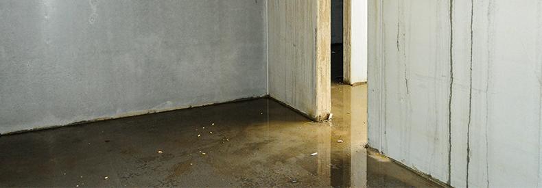 Photo of flooded ground floor