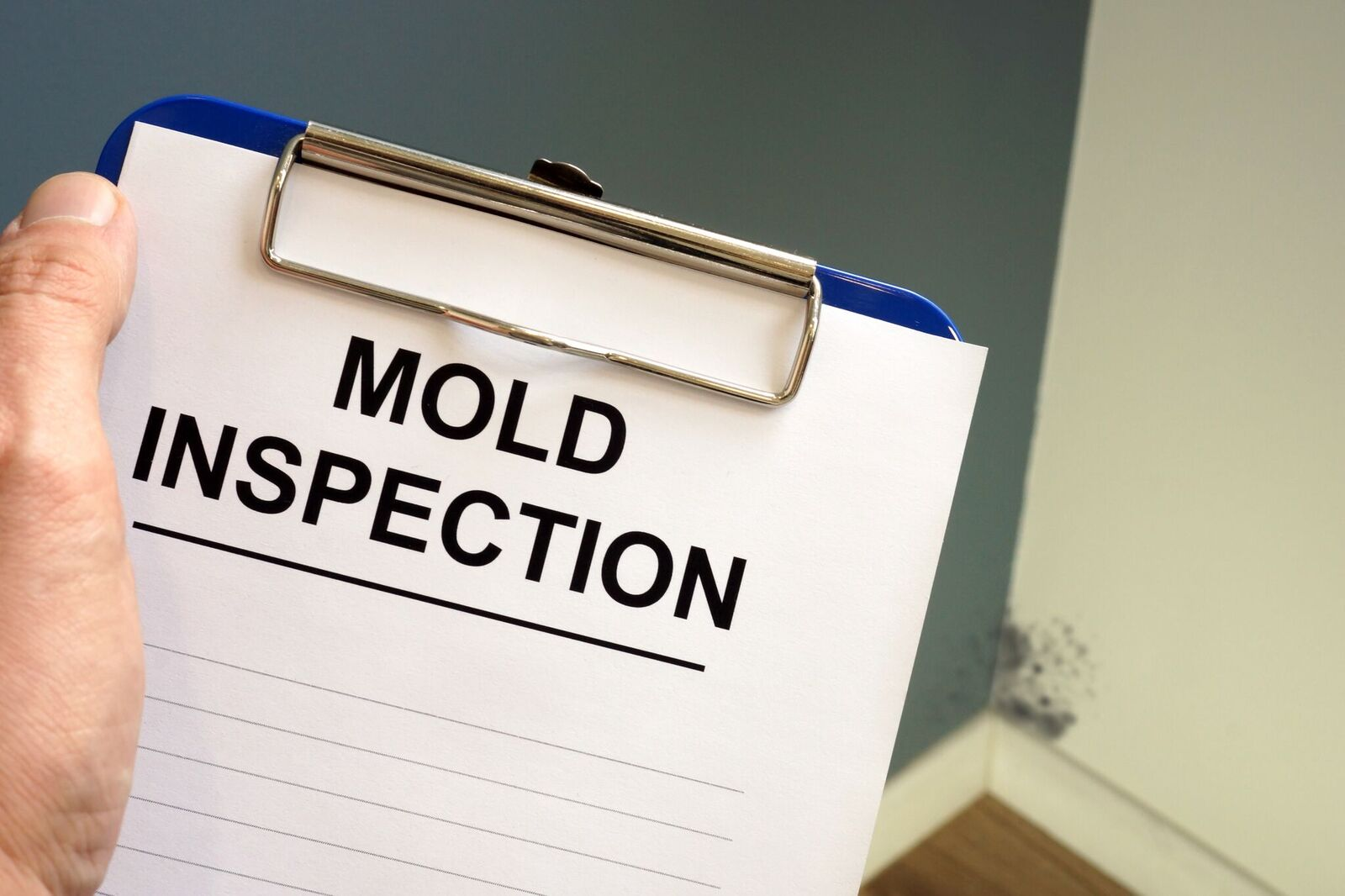 Photo of a clipboard labelled Mold Inspection