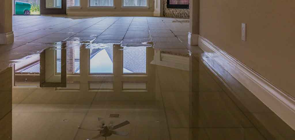 Water Damage Solutions|Emergency Water Cleanup|Water Drying